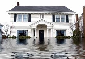 Flood.1